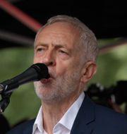 Jeremy Corbyn  Matt Dunham / TT NYHETSBYRÅN