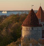 Arkivbild. Tallinn. David Keyton / TT NYHETSBYRÅN