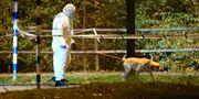 Polisens tekniker på plats vid brottsplatsen i Malmö där kvinnan hittades död. Johan Nilsson/TT / TT NYHETSBYRÅN