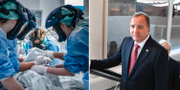 Intensivvård av covid 19-patient / Statsminister Stefan Löfven.  TT