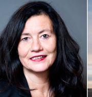 Luftfartsverkets generaldirektör Ann Persson Grivas. Luftfartsverket/TT