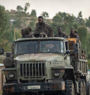 Etiopiens regering hoppas kunna vinna ordkrig på sociala medier på sin nya plattfrom TT/AFP