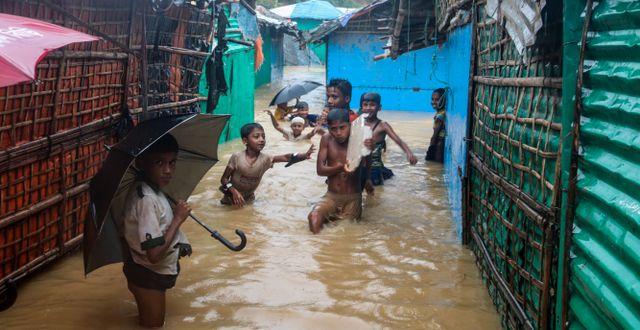 Flyktingläger för rohingyer i Kutupalong, Bangladesh.  Shafiqur Rahman / TT NYHETSBYRÅN