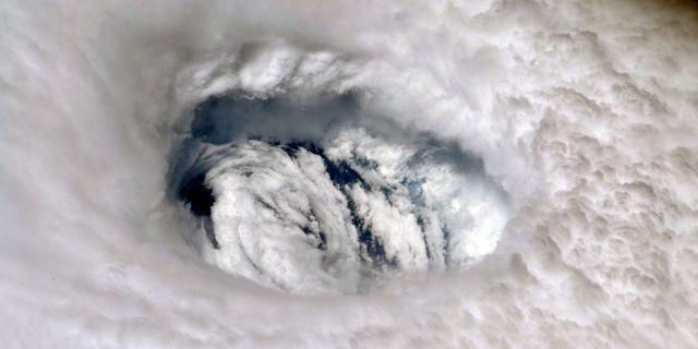 Orkanen Dorian. Nick Hague / TT NYHETSBYRÅN