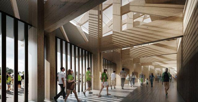 Eco Stadium byggs nästan helt uteslutande av trä. Zaha Hadid Architects