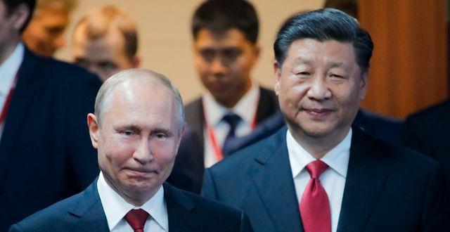 Rysslands president Vladimir Putin och Kinas president Xi Jinping. Dmitri Lovetsky / TT NYHETSBYRÅN