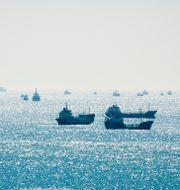 Trafikstockning för fraktfartyg utanför Istanbuls hamn.  Shutterstock
