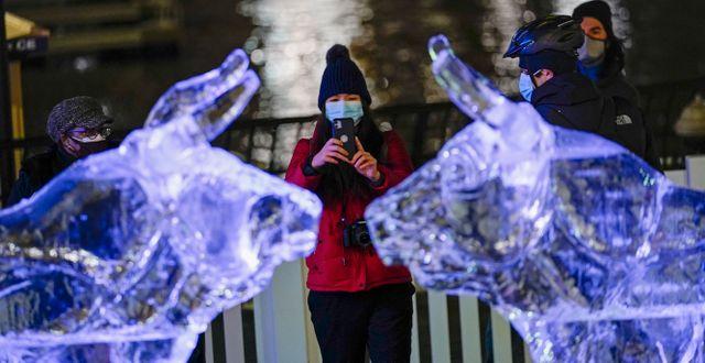 """Bull market? Firandet av """"Oxens år"""" i den kinesiska kalendern 2021. Frank Franklin II / TT NYHETSBYRÅN"""