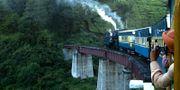 """Darjeeling Limited kallas """"Leksakståget"""" på grund av att rälsen är så smal. Wikicommons"""