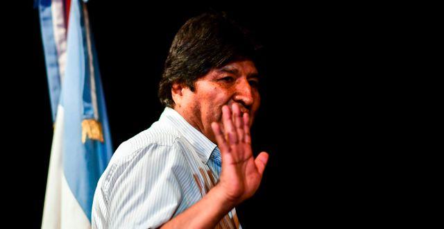 Evo Morales. RONALDO SCHEMIDT / AFP