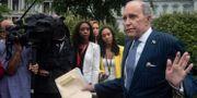 Arkivbild: Kudlow pratar med journalister vid Vita huset. NICHOLAS KAMM / AFP