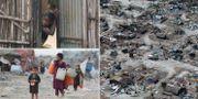 Efter cyklonen i Moçambique/läger i Afghanistan/Efter cyklonen i Moçambique. TT