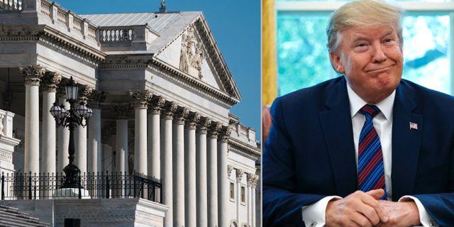 Kongressen och Donald Trump. AP
