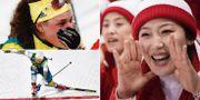 Hanna Öberg, Stina Nilsson och den nordkoreanska klacken. TT