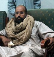 Saif al-Islam efter sitt tillfångatagande 2011. Ammar El-Darwish / TT NYHETSBYRÅN