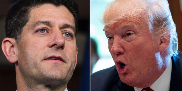 Trump fornekar planer pa att sparka mueller