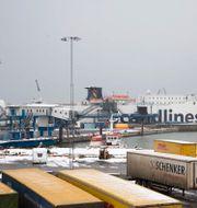 Arkivbild från Trelleborgs hamn.  Drago Prvulovic / TT / TT NYHETSBYRÅN