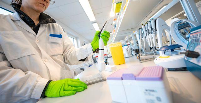 Jakt på virusmutationer vid Region Skånes labb i Lund. Arkivbild.  Johan Nilsson/TT / TT NYHETSBYRÅN