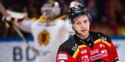 Luleås Einar Emanuelsson deppar efter ishockeymatchen mot Skellefteå. SIMON ELIASSON / BILDBYRÅN