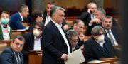 Viktor Orbán i ungerska parlamentet. Zoltan Mathe / TT NYHETSBYRÅN