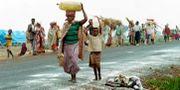 Arkivbild från 1994 i Rwanda. ABDELHAK SENNA / AFP