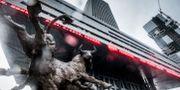 Börsen i Shenzhen. Magnus Hjalmarson Neideman/SvD/TT / TT NYHETSBYRÅN