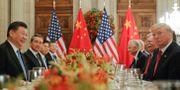 Xi Jinpeng och Donald Trump . Pablo Martinez Monsivais / TT NYHETSBYRÅN
