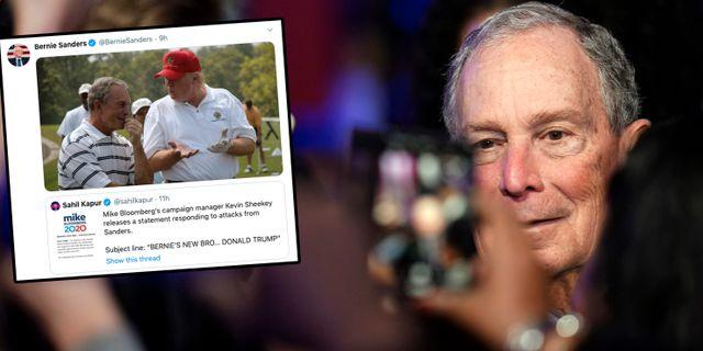 Michael Bloomberg/Sanders tweet. Montage. David J. Phillip / TT NYHETSBYRÅN