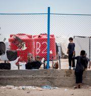 Barn i lägret al-Hol. Baderkhan Ahmad / TT NYHETSBYRÅN