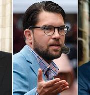 Vladimir Putin, Jimmie Åkesson och Emmanuel Macron TT