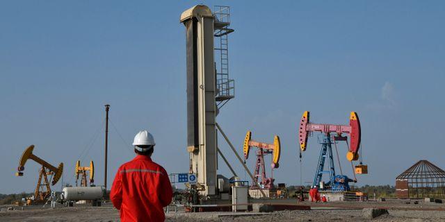 Arkivbild: Oljepumpar i Xinjangprovinsen, Kina. CHINA STRINGER NETWORK / TT NYHETSBYRÅN