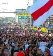 Demonstranter med den gamla belarusiska flaggan tågade genom Minsk på söndagen TT NYHETSBYRÅN