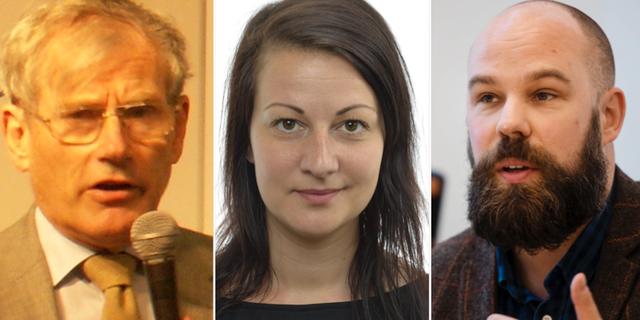 Carl Tham, Sara Karlsson och Daniel Suhonen. Wikipedia/Riksdagen/TT