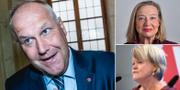 Jonas Sjöstedt, Karin Rågsjö (uppe) och Ulla Andersson. TT