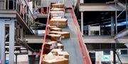 Paket sorteras på Postnords Veddesta-terminal i Järfälla. Marcus Ericsson/TT / TT NYHETSBYRÅN