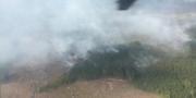 Skogsbranden vid Björneborg Larz Eidwall/Bergslagens räddningstjänst