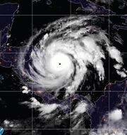 Orkanen Iota på satelitbilder. TT NYHETSBYRÅN