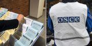 Illustrationsbilder. Valsedlar i en svensk vallokal/En observatör från OSSE.  TT
