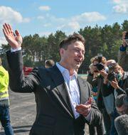 Elon Musk vid bygget av den nya Berlinfabriken. Patrick Pleul / TT NYHETSBYRÅN