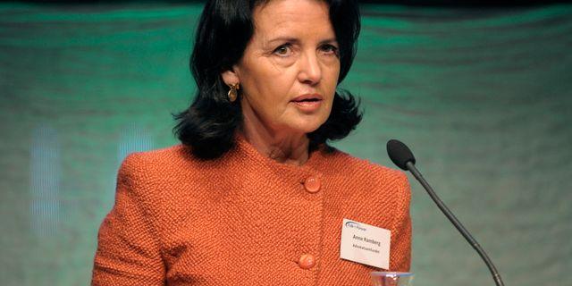 Anne Ramberg. ULF PALM / TT / TT NYHETSBYRÅN