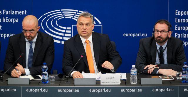 Victor Orbán och József Szájer (längst till höger)/Arkivbild Fred Marvaux