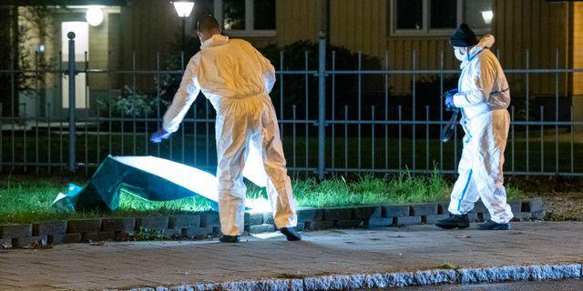 Polisens tekniker på Lönngatan efter misshandeln den 10 november. Johan Nilsson/TT / TT NYHETSBYRÅN