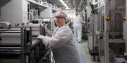 Arkivbild: SolarWorlds fabrik i Oregon Natalie Behring / TT NYHETSBYRÅN