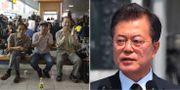 Sydkoreaner följer toppmötet via tv på en tågstation i Seoul./Sydkoreas president Moon Jae-in.  AP/TT