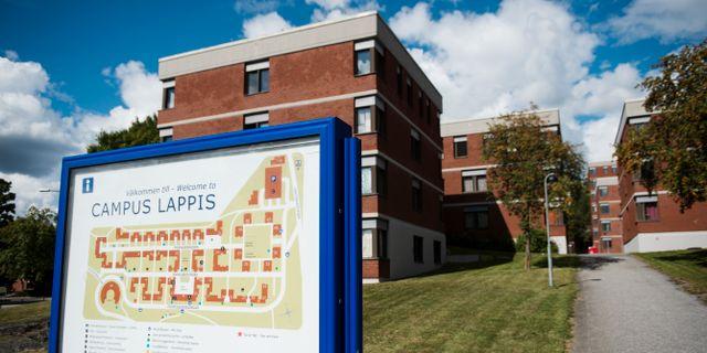 Campus Lappis, Lappkärrsberget. Studentbostäder i Stockholm. Arkivbild. Izabelle Nordfjell/TT / TT NYHETSBYRÅN
