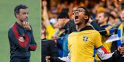 Spaniens tränare Luis Enrique, svensk supporter.  Bildbyrån