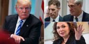 Donald Trump, Robert Mueller och Natalia Veselnitskaja. TT