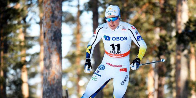 Hanna Falk. Uld Palm/TT / TT NYHETSBYRÅN