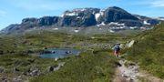 Norsk natur. Marianne Løvland / TT NYHETSBYRÅN