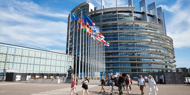 Europaparlamentet i Strasbourg. Fredrik Persson/TT / TT NYHETSBYRÅN